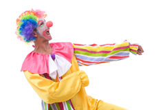 Funny and colorful clown Stock Image