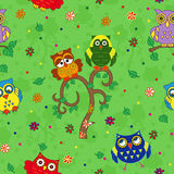 Funny colourful owl seamless pattern over green Stock Photos