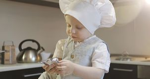 A funny cook child is sitting on a table and eating a chocolate candy. A small chef in a culinary cap stole the sweetness in the kitchen stock footage
