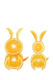 Funny couple of rabbit made of the orange slices Royalty Free Stock Image