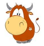 Funny cow Stock Photos