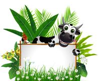 Funny cow with blank sign. Vector illustration of funny cow with blank sign and tropical forest background stock illustration