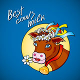 Funny cow carry wooden pail with milk. Lawn, flowers and sky. Vector illustration Royalty Free Stock Images