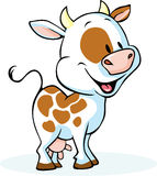 Funny cow cartoon standing and smiling. Vector illustration Stock Photography
