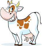 Funny cow cartoon standing  on white background Stock Photos