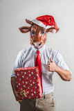 Funny cow christmas businessman Stock Image