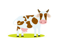 Funny cow isolated vector icon. Funny cow vector illustration isolated on white background. Cute cattle farm animal, domestic livestock character in cartoon Stock Photography