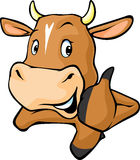 Funny cow peeks out from behind a white surface - vector cartoon Royalty Free Stock Images