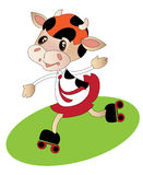 Funny cow roller-blades Royalty Free Stock Photography