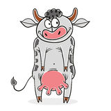 Funny cow vector cartoon. Stock Images