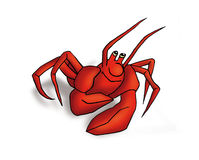 Funny crab. Cartoon funny red crab on white background Stock Photos