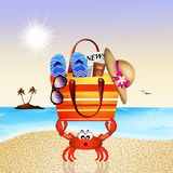 Funny crab with beach bag Royalty Free Stock Image