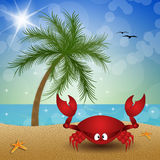 Funny crab on the beach Royalty Free Stock Image