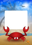 Funny crab on the beach Royalty Free Stock Images