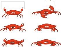 Funny crab cartoon Stock Photography