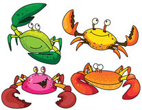 Funny crabs Stock Photos