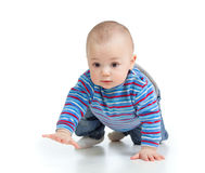 Funny crawling baby over white background Royalty Free Stock Image