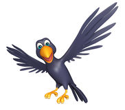 funny Crow cartoon character Royalty Free Stock Photography