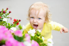 Funny curly hair toddler girl smelling red flowers at the spring or summer day. Little child tantrum Royalty Free Stock Image
