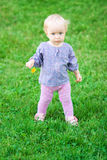 Funny cute baby girl with flower on a meadow Stock Images