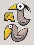 Funny cute Birds Stock Photos
