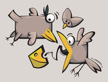 Funny cute Birds Royalty Free Stock Image