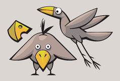 Funny cute Birds Stock Images