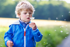 Funny cute kid boy having fun with dandelion flower Royalty Free Stock Photo