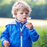 Funny cute kid boy having fun with dandelion flower Stock Photo