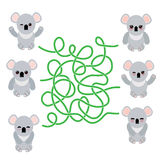 Funny cute koala set on white background. labyrinth game for Preschool Children. Vector Royalty Free Stock Photo