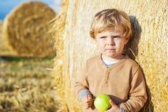Funny cute little kid boy eating organic apple on late summer da Royalty Free Stock Photo
