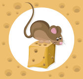 Funny cute mouse character on a cheese slice. Cartoon Vector illustration Royalty Free Stock Photo
