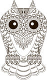 Funny cute owl Stock Images