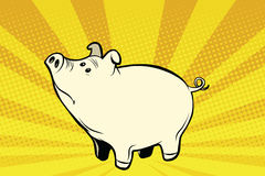 Funny cute pig pop art illustration Royalty Free Stock Photo