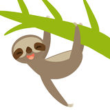 Funny and cute smiling Three-toed sloth on green branch, isolated white background. Vector Royalty Free Stock Photography