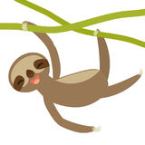 Funny and cute smiling Three-toed sloth on green branch, isolated white background. Vector Stock Photo