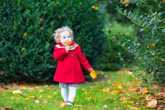 Funny cute toddler girl in red coat in autumn park Stock Image