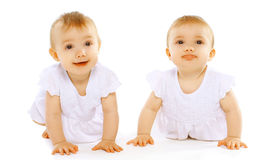 Funny cute twins baby. Having fun Stock Photography