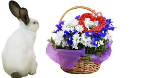 Funny Cute White Rabbit And A Basket Of Wildflowers With A Heart Royalty Free Stock Photos