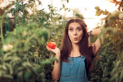 Surprised Farm Girl Holding a Tomato inside a Greenhouse Stock Photography