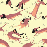 Funny dachshunds playing with insects seamless pattern. Happy smart vector dogs wallpaper Stock Photos