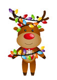 Funny deer Stock Image