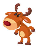 Funny deer Stock Images