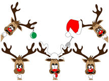 Funny deers Royalty Free Stock Photos