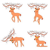 Funny deers on a white background Stock Photography