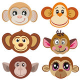 Funny differently monkey. Face of monkeys. Royalty Free Stock Photography