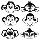 Funny differently monkey. Face of monkeys. Royalty Free Stock Image