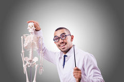 Funny doctor with skeleton against the gradient Stock Image