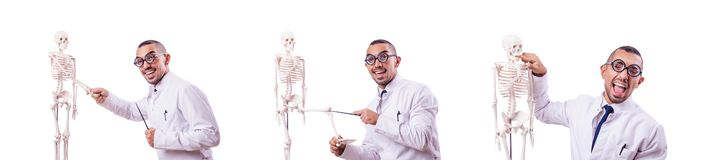 The funny doctor with skeleton isolated on white. Funny doctor with skeleton isolated on white stock photos