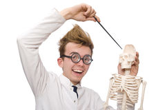 The funny doctor with skeleton isolated on white Stock Photos